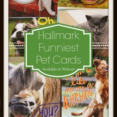 Hallmark Funniest Pet Cards at Walmart #FunnyPetCards #shop