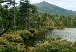 Best Camping in Maine, Massachusetts, New Hampshire and More!