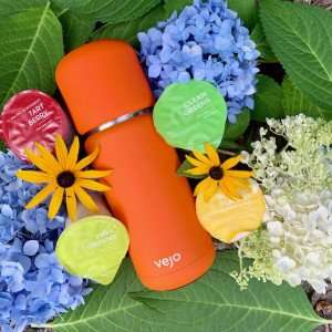 Vejo Review: Making Healthy Smoothies in a Snap